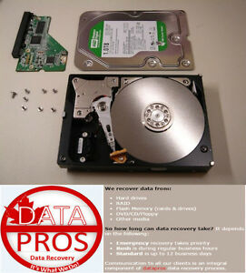 datapros - Recovers What Others Cannot! Mac's included.