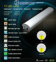 LED T1 or Tube Lights