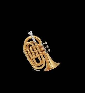 PROMOTION! NEW MINI/POCKET TRUMPET FROM $229.00