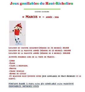 Mascottes - LOCATION Saint-Hyacinthe Québec image 2