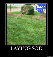 we take pride in your lawns