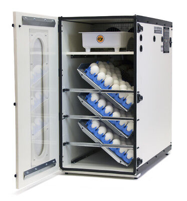 GQF Professional Egg Incubator Cabinet Digital LCD Display Picture Window 1500 for sale  Milwaukee