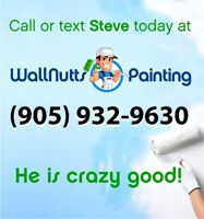 Need a Painter?  Call or text Steve 905 932 9630