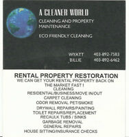 Carpet Cleaning / Cleaning