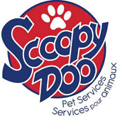 Scoopy Doo Poop Scoop Services