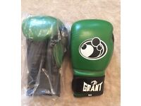 (CH) Boxing Gloves