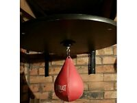 **SOLD** EverLast Speed Ball