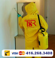 GTA BED BUG EXPERTS. BEST PEST CONTROL. 100% SUCCESS, 35% OFF