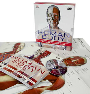 NEW Human body book box set+DVD+poster
