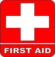 Need First Aid? Don't have time for a classroom? $100!