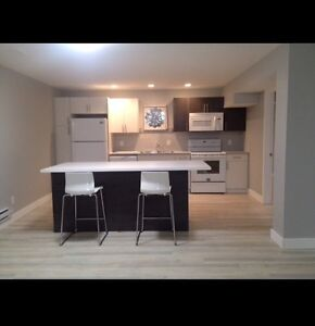Beautiful new basement suite for rent