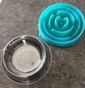 Dog slow feeder puzzle bowl and a stainless steel water bowl St. John's Newfoundland image 1
