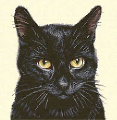 BLACK  CAT, KITTEN  ~ Complete counted cross stitch kit