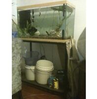 """27 GALLON FISH TANK AND 24"""" LONG STAND"""