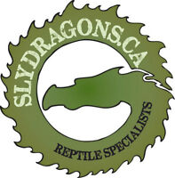 SlyDragons Unforgettable Reptile Bithday Party/Shows!