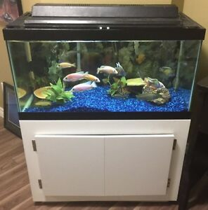 New used pet accessories in guelph kijiji kijiji for 65 gallon fish tank