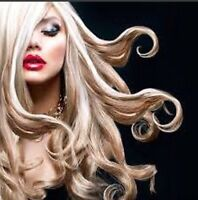 BEAUTIFUL HAIR Designer Haircut & Foils fr ONLY $69