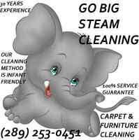 GB STEAM CARPET&FURNITURE CLEANING- INFANT & PET FRIENDLY
