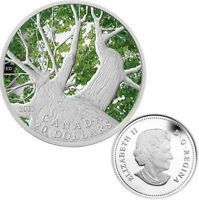 1 oz Fine Silver Coin - Canadian Maple Canopy (Spring) 2013