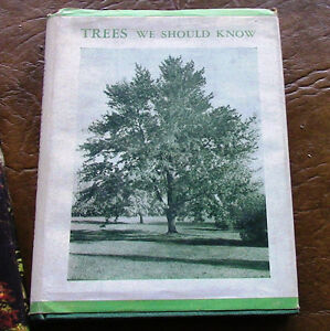 Two Books: The World of Trees and Trees We Should Know Kitchener / Waterloo Kitchener Area image 3