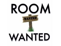 Ground floor room wanted
