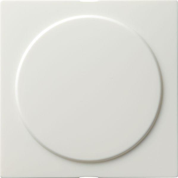 Gira S-Color Blindabdeckung mit Tragring Reinweiß 026840