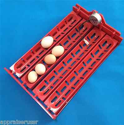Automatic 32 40 Goose Egg Turner Tray With Motor 12 -110 - 220 Volt