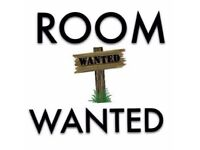 Room in Warrington wanted