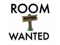 WANTED: Room to Rent / Flatshare in Aviemore