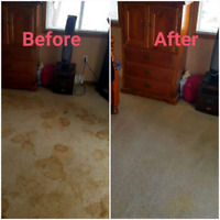 Get Rid Off Carpet Dust, Germs, Dirts, Stains: Carpet Cleaning