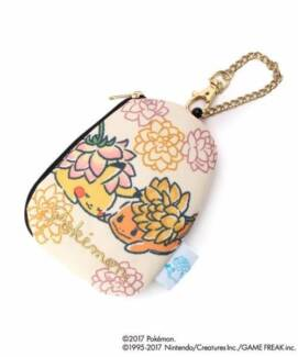 Lost pouch case around Royal Randwick Shopping Centre at Avoca St