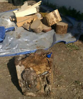 Assorted burls & wood for turning - all for $50