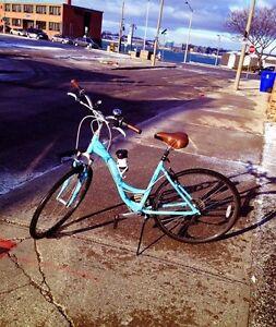 Trek Hybrid Retro Style Bike