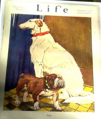 "BORZOI RUSSIAN WOLFHOUND & BULLDOG DOG COVER ""PALS"" REPRINT LIFE MAG COVER 1921"
