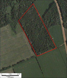 """REDUCED""Land / Woodlot"