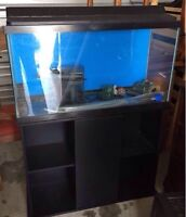 Fish acquarium on a black stand with tank supplies