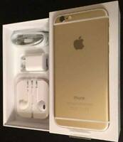 iPhone 6S Plus Gold