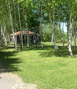 Water front cabin & lots on the South W Branch of the Mirimachi,