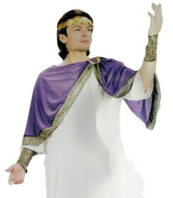 Caesar Roman Ancient Greek Costume Adult Mens Fancy Dress Outfit Cosplay New (Caesar Outfit)