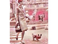 Dog Waling Girl in West End