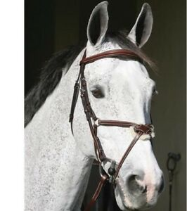 NEW Figure 8 Bridle
