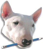 Bluedog Bookkeeping & Training ~ Taxes QuickBooks Simply Account