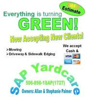 Lawn mowing service credit card or cash accepted