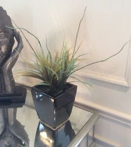 Black Vase with Grass