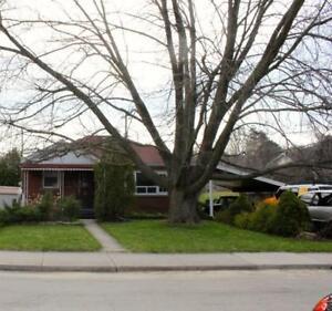 149 Bowman Street Hamilton, Ontario