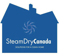 Steam Dry Canada Carpet & Duct Cleaning Franchise
