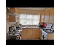 Kitchen cooker washing machine fridge !!! Bargain price