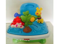 Fisher-Price Discover n Grow Booster Seat