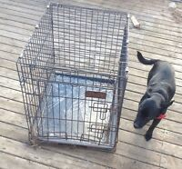 Small kennel/crate