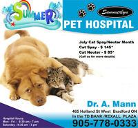 Spay, Neuter, Dentistry,Vaccine,Cruciate at Affordable cost